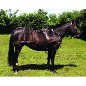 http://www.selleriestpierre.com/99-294-thickbox/harnais-en-cuir-huile.jpg